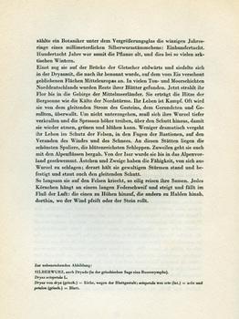 img004-88.jpg
